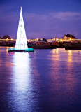 Tallest Christmas Tree 4