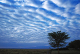 Amboseli Sky