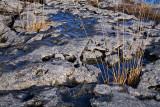 Burren Limestone