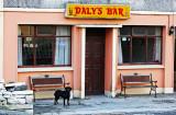 Daly's Bar