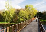 Black Bridge, Spring Green