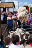 Tossing the Fleece