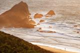 Point Reyes Coastline