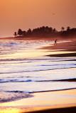 Brenu Beach 17