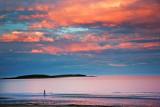 Skerries Coastline