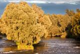 Plassey Falls