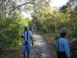 Birding in the Pine savanna