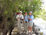 Birding on the Limpkin trail3