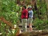 Birding on the Limpkin trail2