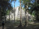 Lamanai Pyramid2