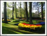 HOLLAND - KEUKENHOF PARK