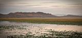 East Alligator River Sunrise