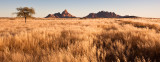 Spitzkoppe Sunrise in Sea of Grass
