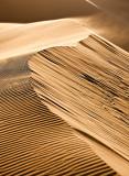 Dune Crest Sand Storm