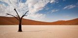 Tree and the Shadow at Deadvlei
