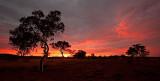 Karijini Fiery Sunrise