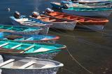 FishingPangas3238.jpg