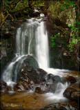 Waterfall in Feldberg Region, Black Forest