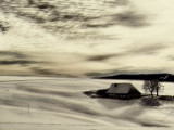 Black Forest Winter