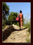 Sicily - Return from the Beach
