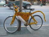 Stripes and Spokes - The Purrfect Ride