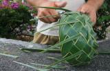 Coconut Tree Bowl