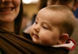 Baby Belchigator