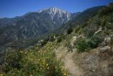 Mt San Jacinto.jpg
