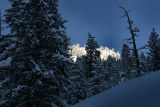 1Fresh Snow.jpg