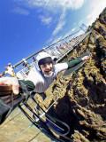 Bungee Jumping At The Royal Gorge Bridge