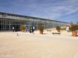 Avignon (31 juillet au 3 aout 2009)