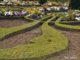 Versailles Jardins 2.jpg