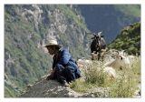Yunnan - Lijiang, Tiger Leaping Gorge, Baisha