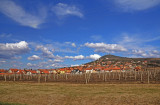Vrsac Vineyard 2009