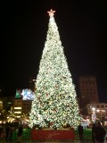 Lighted Tree at Union Square