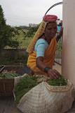 vegetable vendor in pune- simple life