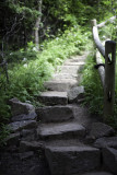Steps Leading to the Mountain Trail Above Sand Beach