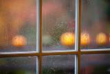 Rainy Autumn Pumpkins #1