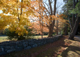 The Black House Drive in Autumn