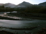 First Light - Hoh River