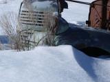 Sage - Rust - Snow