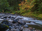 The Sol Duc River - Low and Slow