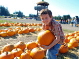 Glee at the Pumpkin Patch!