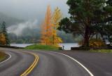 Highway 101 - Lake Crescent