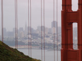 The View From Marin