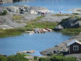 Utsikt från fyren över våra kajaker