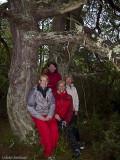 Cattis,  Stina, Ewa & Kattis har hittat en fin tall i skogen.