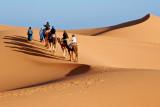 Sahara Gallery