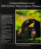 D3E_2172ZooInsidePPage1.jpg