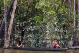 amazonas-73-2.jpg